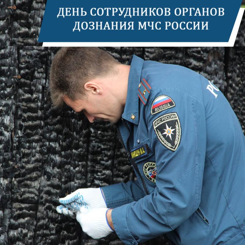23 января – День сотрудников органов дознания МЧС России